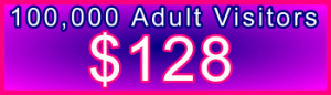 350x100_100,000_Adult_128USD: Sales Support Banner Link