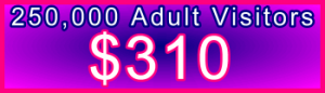 350x100_250000_Adult_310USD.png: Sales Support Banner Link