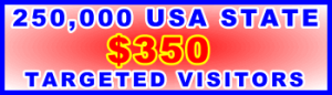 350x100__250,000 US State 350USD: Visitor Sales Support Banner