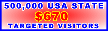350x100__500,000 US State 670USD: Visitor Sales Support  Banner