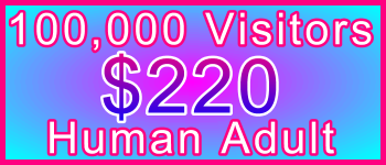 Adult 100,000 Visitors $220: Visitor Sales Information Support Banner