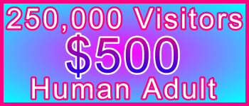Adult 250,000 Visitors $500: Visitor Sales Information Support Banner