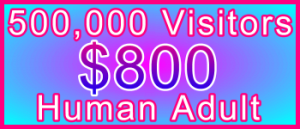 Adult 500,000 Visitors $800: Visitor Sales Information Support Banner