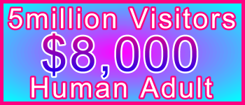 Adult 5 million Visitors $8000: Visitor Sales Information Support Banner