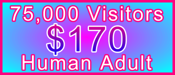 Adult 75,000 Visitors $170: Visitor Sales Information Support Banner