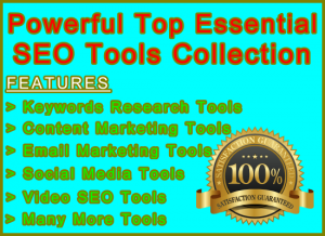 Fiverr Powerful SEO Tools Image: Visitor Sales Information Support Banner