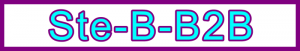 Ste-B-B2B Homepage Title Header: Visitor Navigation Information Support Banner