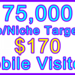 Ste-B-B2B Mobile Visitors 75000 $170