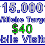 Ste-B-B2B Mobile Visitors 15000 $40