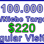 Ste-B-B2B Regular Visitors 100,000 $220