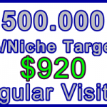 Ste-B-B2B Regular Visitors 500,000 $920