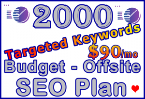 Ste-B-B2B SEO-Solutions Offsite SEO 2,000 keywords £90: Visitor Sales Support Information Banner