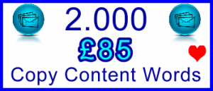 Ste-B-B2B 2000 Words Copy £85: Visitor Sales Support Information Banner