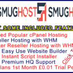 Ste-B2B SmartHost Example Banner Link White - red blue logo edit